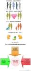 Infographic - 3 Cs